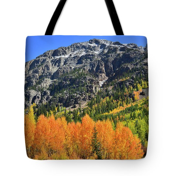 Tote Bag featuring the photograph Alpine Loop Road Aspens by Ray Mathis