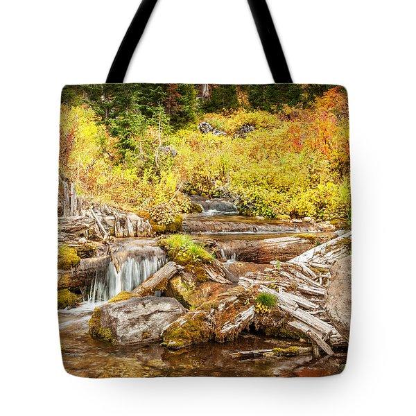 Alpine Waterfall Tote Bag