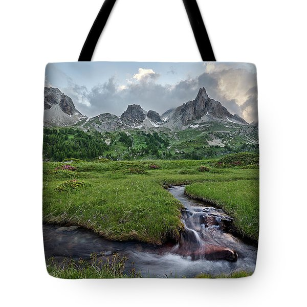 Alps In The Afternoon Tote Bag