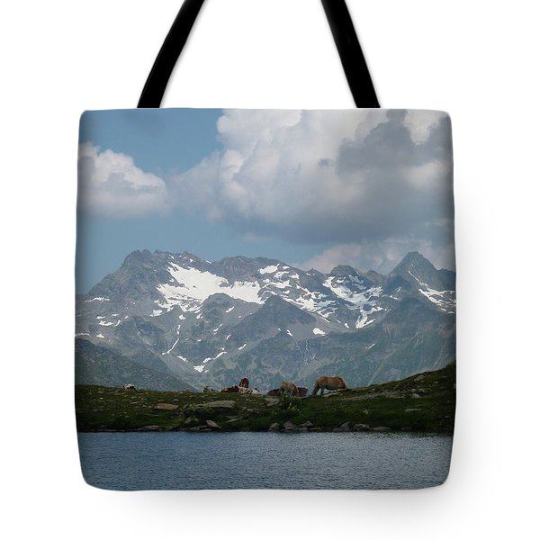 Alps Magenificence Tote Bag