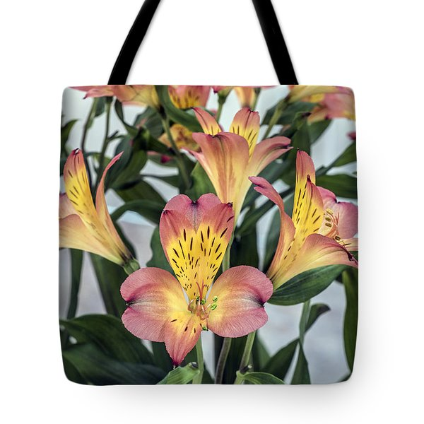 Alstroemeria Blossoms Tote Bag