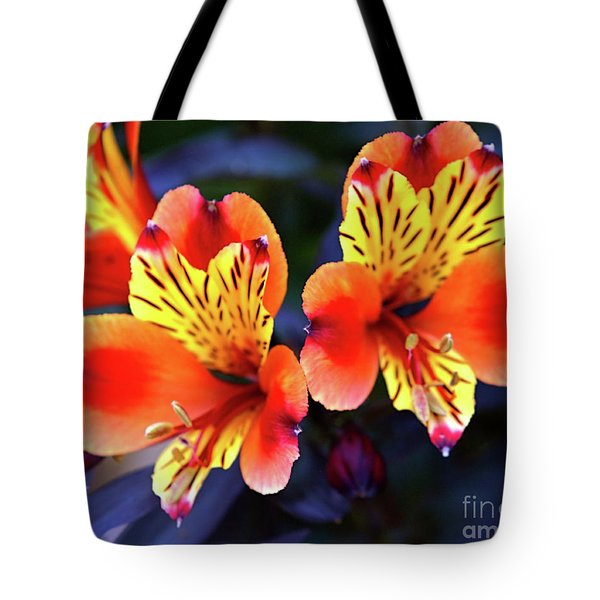Tote Bag featuring the photograph Alstroemeria Indian Summer by Baggieoldboy