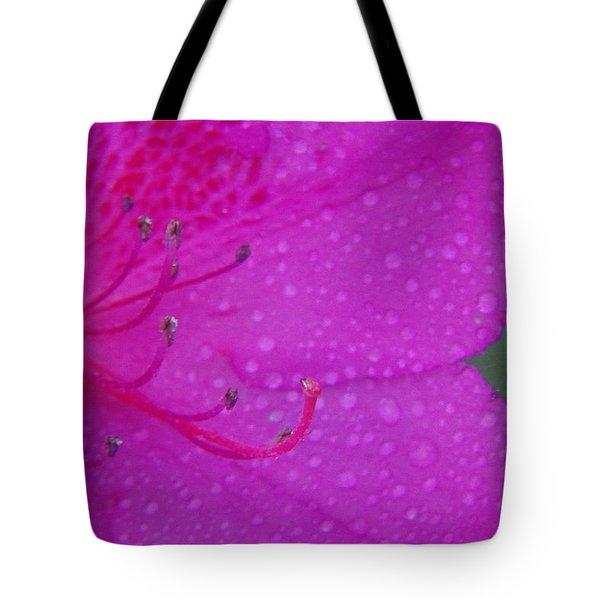 Althea Tote Bag by Priscilla Richardson