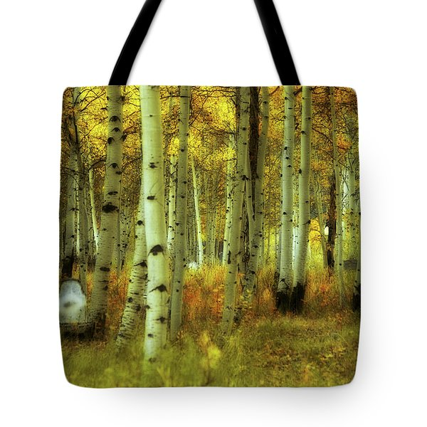 Alvarado Autumn 1 Tote Bag