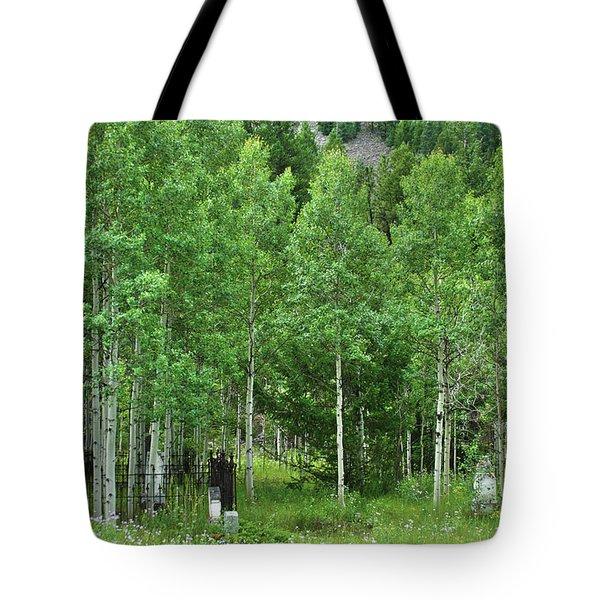 Alvarado Summer Tote Bag