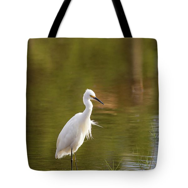 Always Watching Tote Bag