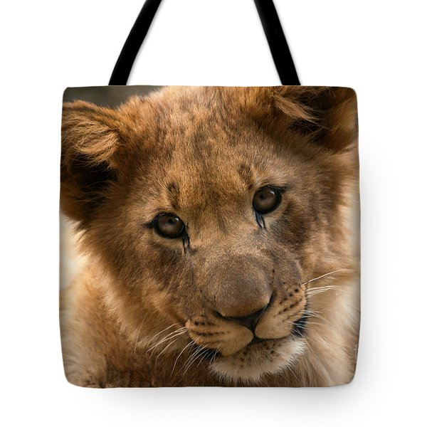 Tote Bag featuring the photograph Am I Cute? by Christine Sponchia