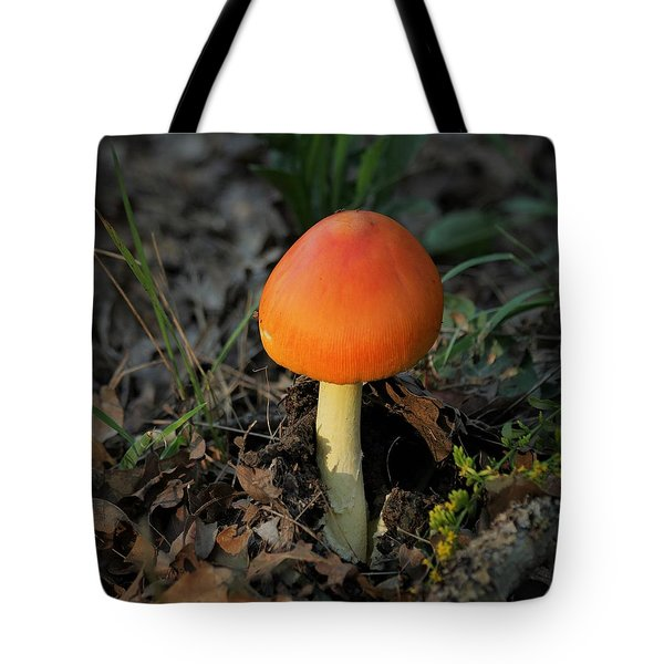Tote Bag featuring the photograph Amanita Arrival by Sheila Brown