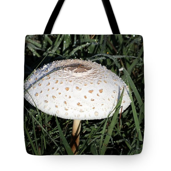 Tote Bag featuring the photograph Amanita Mushroom And Morning Dew by Sheila Brown