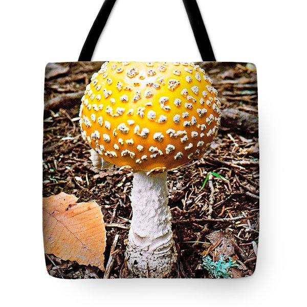 Amanita Mushroom Photo Tote Bag
