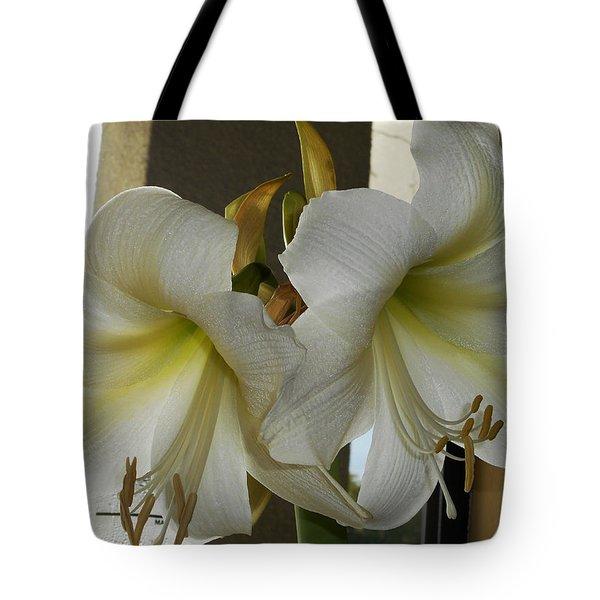 Amaryllis 1 Tote Bag