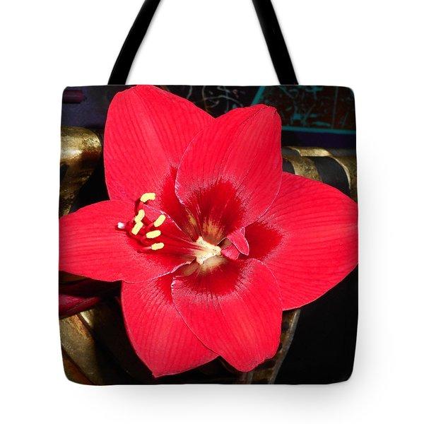 Amaryllis 4 Tote Bag