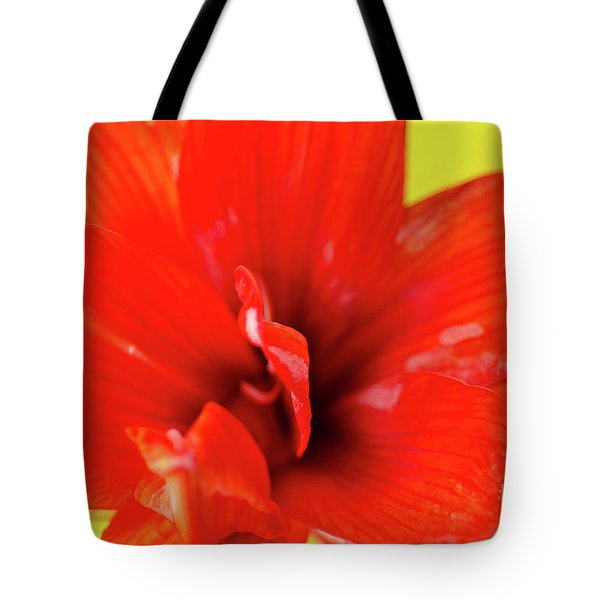 Amaryllis Jaune Red Amaryllis Flower On Bright Yellow Background Tote Bag by Andy Smy