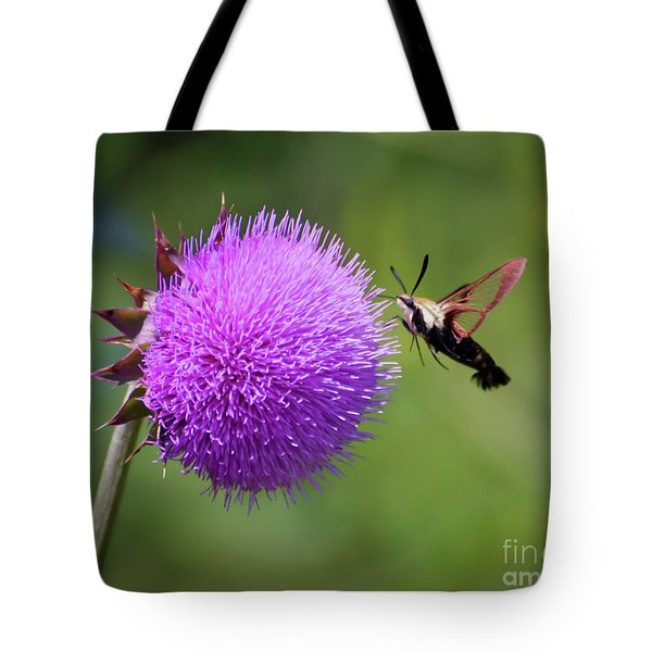 Tote Bag featuring the photograph Amazing Insects - Hummingbird Moth by Kerri Farley