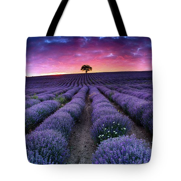 Amazing Lavender Field With A Tree Tote Bag by Evgeni Dinev