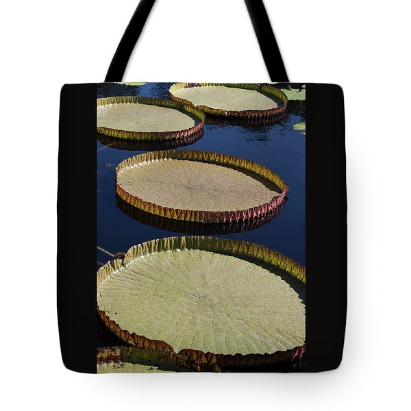 Amazonas Lily Pads II Tote Bag by Suzanne Gaff