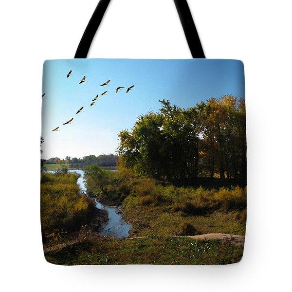 Amber Morning Tote Bag by Cedric Hampton