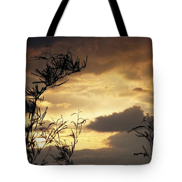 Amber Sky Tote Bag by Glenn McCarthy Art and Photography