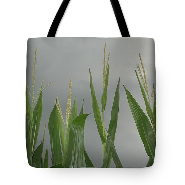 Amber Waves Tote Bag