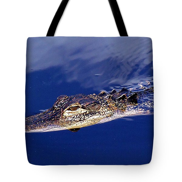 American Alligator 014 Tote Bag by Chris Mercer