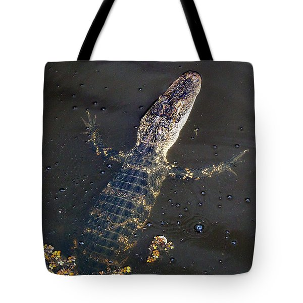 American Alligator 016 Tote Bag by Chris Mercer