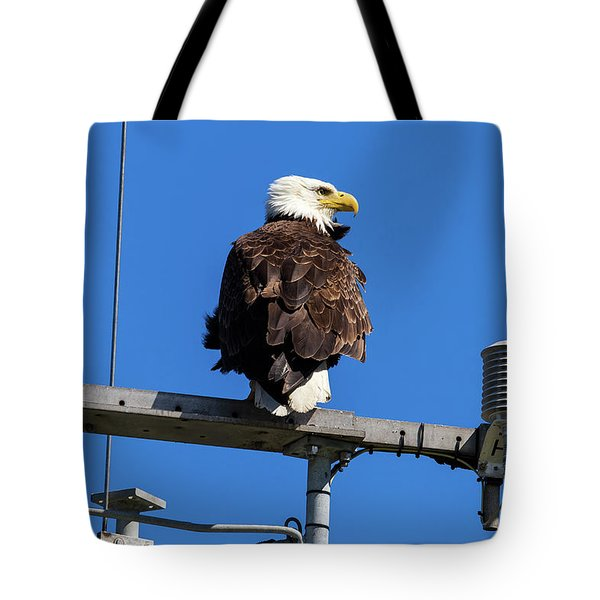 American Bald Eagle On Communication Tower Tote Bag by David Gn