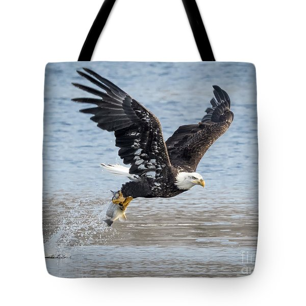 American Bald Eagle Taking Off Tote Bag