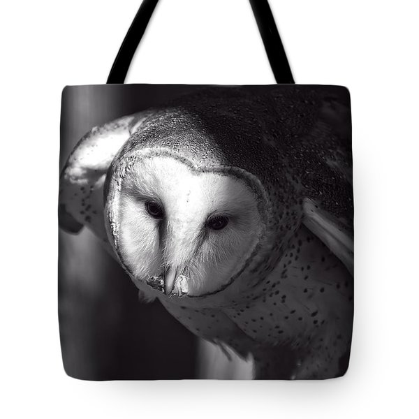 American Barn Owl Monochrome Tote Bag