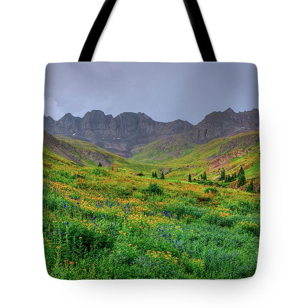 American Basin Summer Storm Tote Bag by Teri Brown