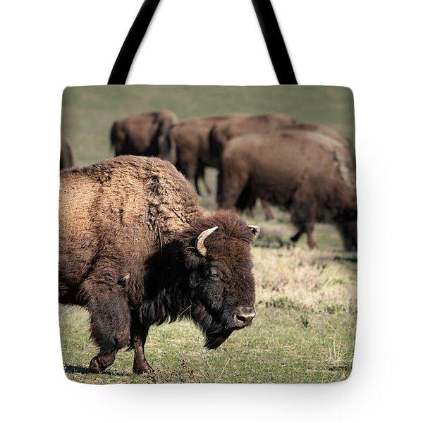 American Bison 5 Tote Bag