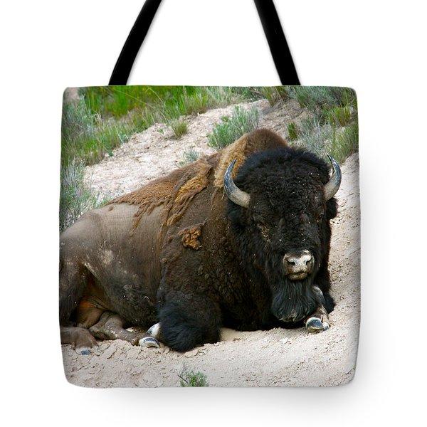 American Bison Tote Bag by Karon Melillo DeVega