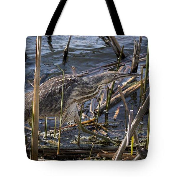American Bittern Tote Bag