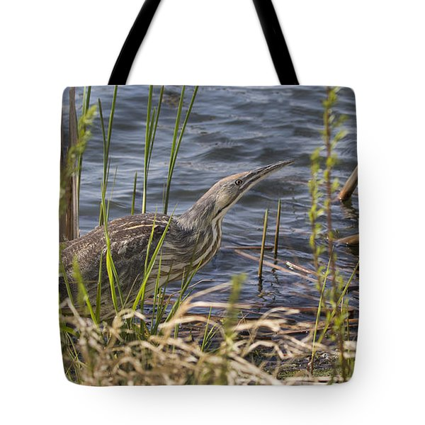American Bittern Hunting Tote Bag