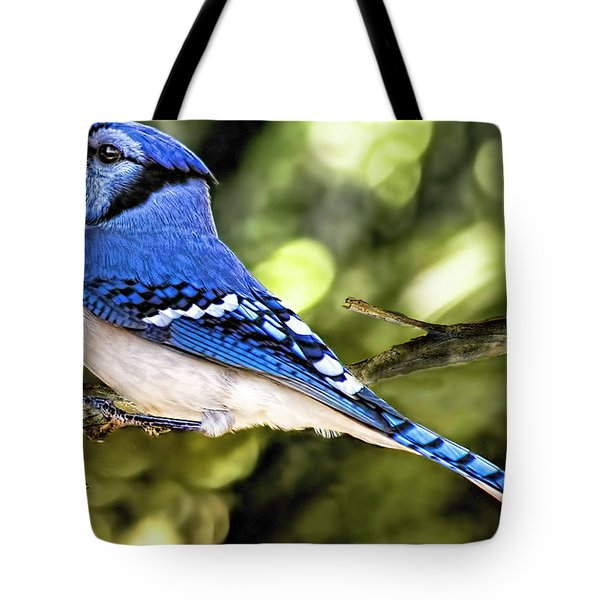 Blue Jay Bokeh Tote Bag