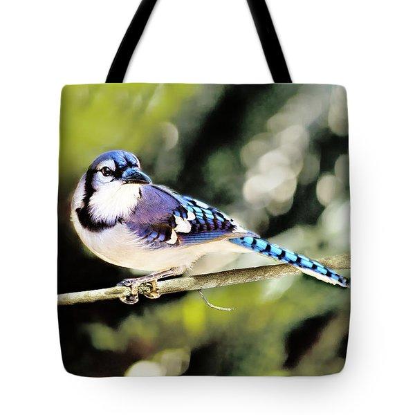 American Blue Jay On Alert Tote Bag
