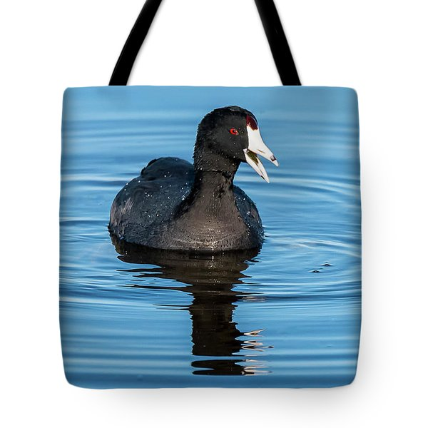 Tote Bag featuring the photograph American Coot by Michael D Miller