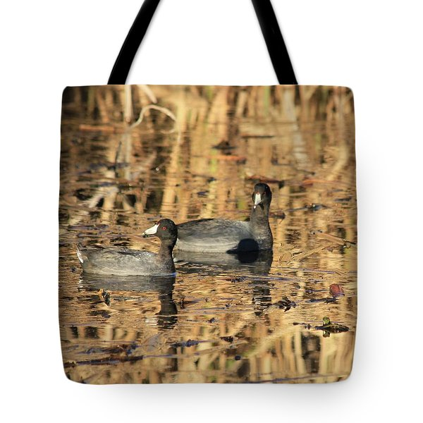 Tote Bag featuring the photograph American Coots by Jerry Battle