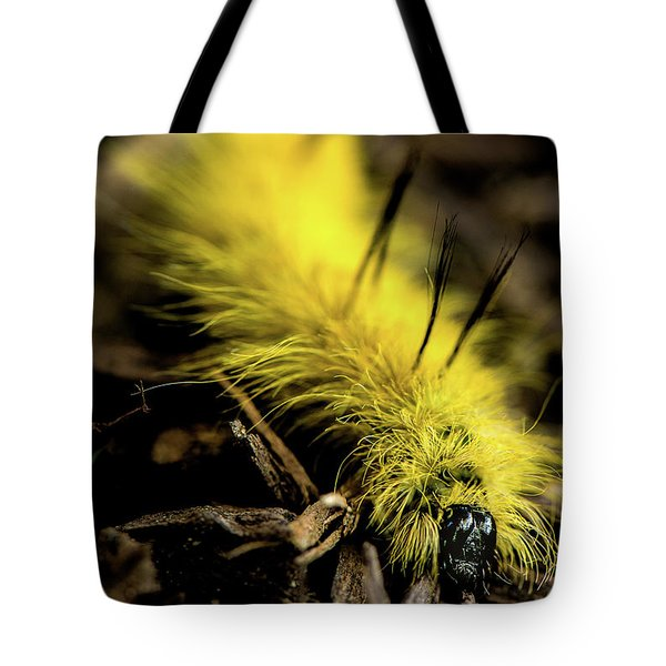American Dagger Moth Caterpillar Tote Bag