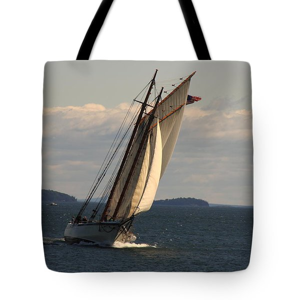 American Eagle In A Good Wind Tote Bag