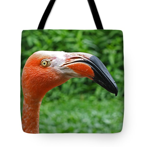 American Flamingo Tote Bag by Kevin McCarthy
