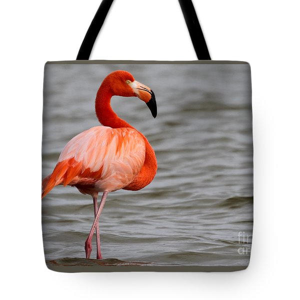 American Flamingo Tote Bag