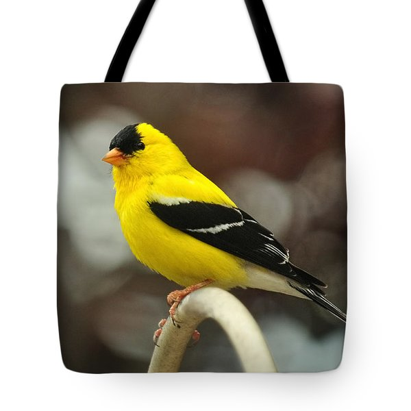 Tote Bag featuring the photograph American Gold Finch by Lara Ellis