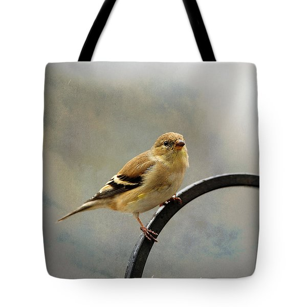 American Goldfinch Tote Bag by Diane Giurco