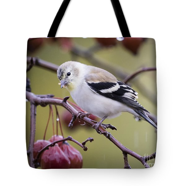 American Goldfinch In The Rain Tote Bag