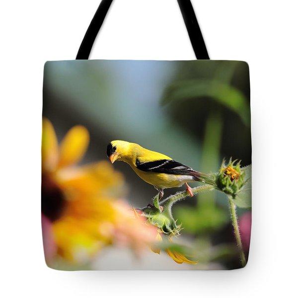 American Goldfinch Tote Bag