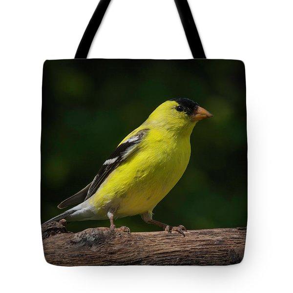 American Goldfinch Male Tote Bag