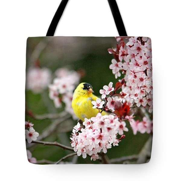 American Goldfinch Tote Bag by Trina  Ansel
