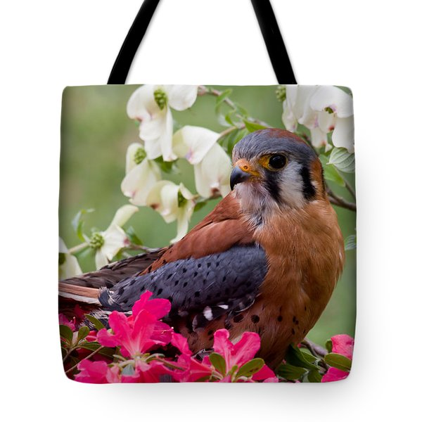 American Kestrel In The Springtime Tote Bag