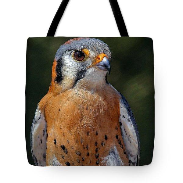 American Kestrel Portrait  Tote Bag