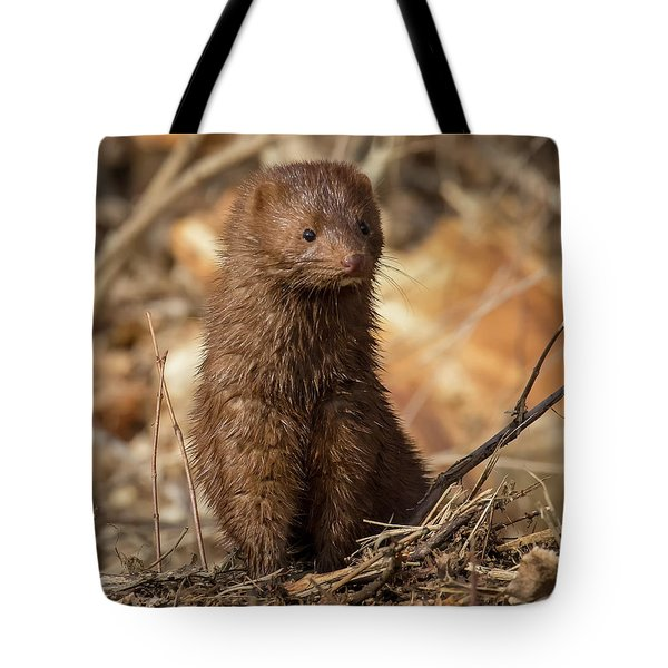 Tote Bag featuring the photograph American Mink At Johnson Park by Ricky L Jones